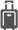 test-koffer-grau-H30px